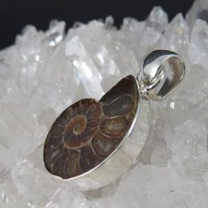 Colgante Ammonite y plata